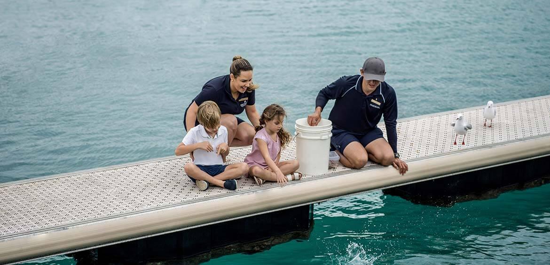 Giant Grouper feeding at InterContinental Hayman Island Resort