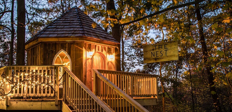 Nest Treehouse Exterior