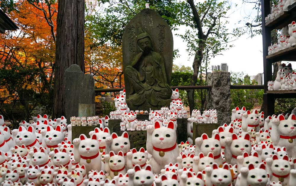 Maneki-neko, (or Lucky Cats, or Beckoning Cats, or Fortune Cats) statue inside Gotokuji temple (Neko temple) in Tokyo, Japan.
