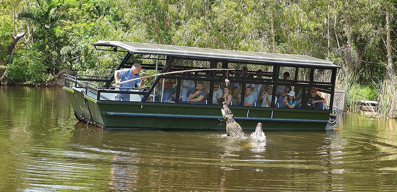 Boat Cruise Hartley's Lagoon at Hartley's Crocodile Adventures