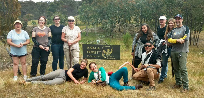 Echidna Walkabout Tours koala forest sign