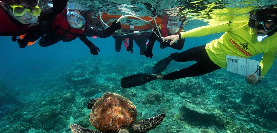 Sunlover Reef Cruises Marine Biologist for a Day