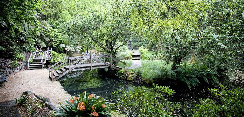 Alfred Nicholas Gardens, Dandenong Ranges, Victoria