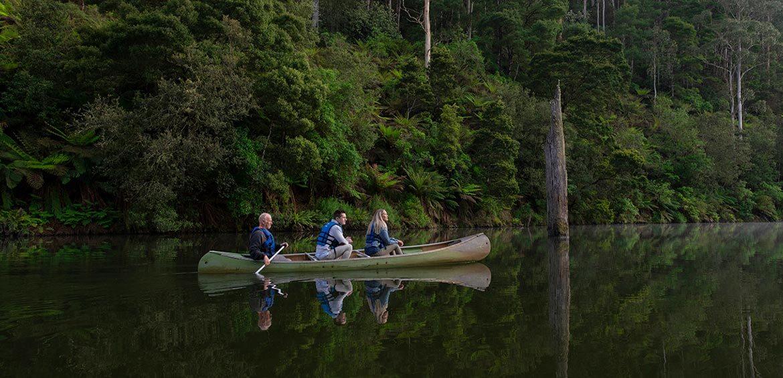 Paddle with Platypus, Otway Eco Tours, Lake Elizabeth