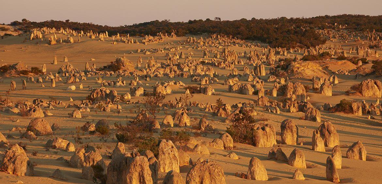The Pinnacles, Nambung National Park