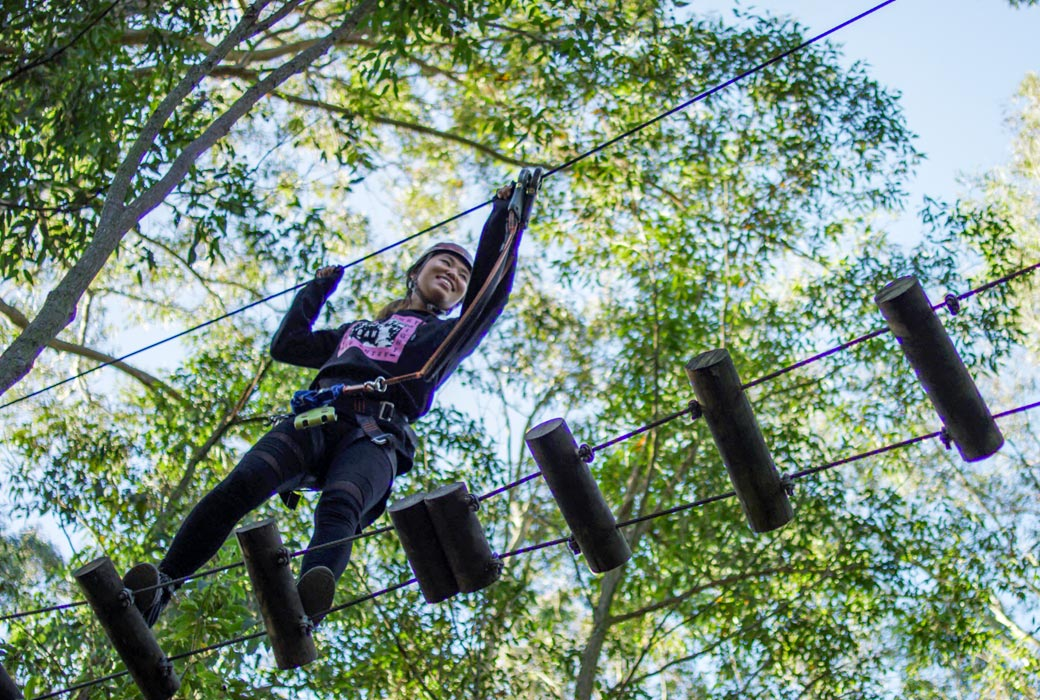 TreeTop Adventure Park, Newcastle