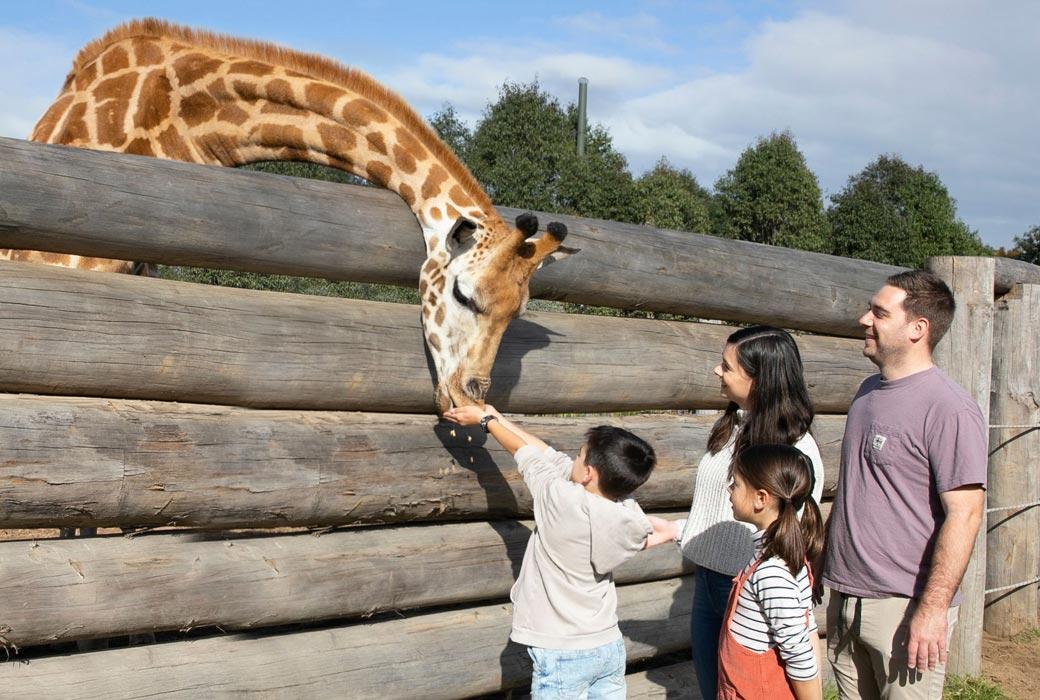 Western Sydney Parklands - Sydney Zoo