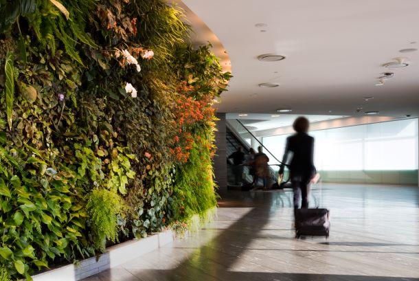 Qantas lounge Sydney Airport