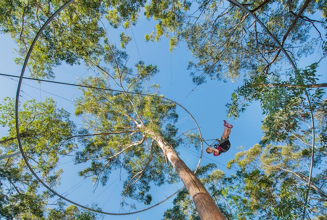 Western Sydney Parklands treetop adventure
