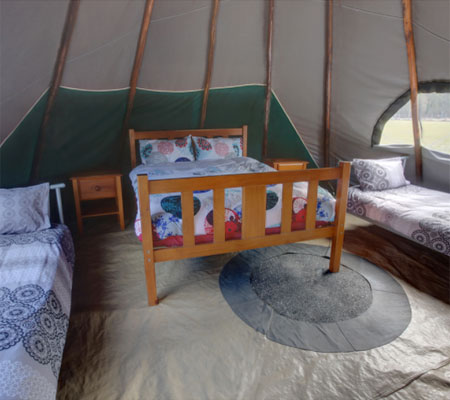 Native American style tipi at Aranyani Bison Adventure Tourist Park