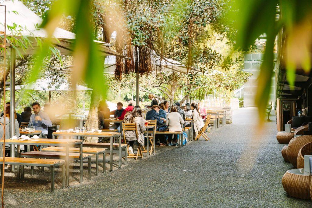 Bodhi Vegan restaurant Sydney