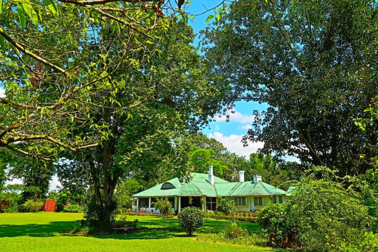 Wild Mahseer best resorts for families in India
