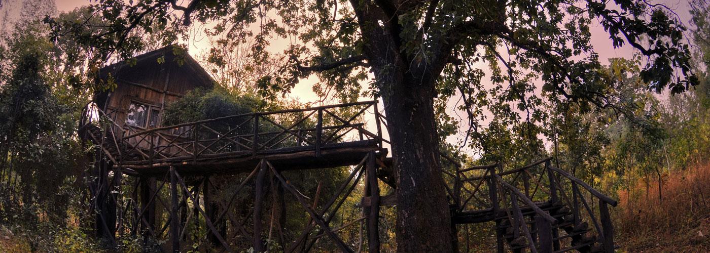 Tree House Hideaway, Bandhavgarh National Park