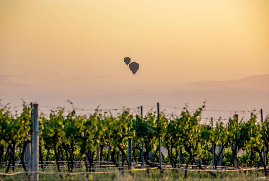Short breaks from Sydney - Hot air balloons over the Hunter Valley © Destination NSW