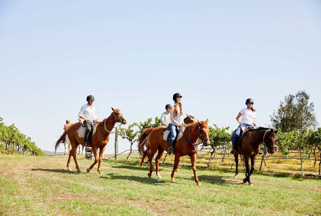Horse riding tour in the Hunter Valley © Destination NSW