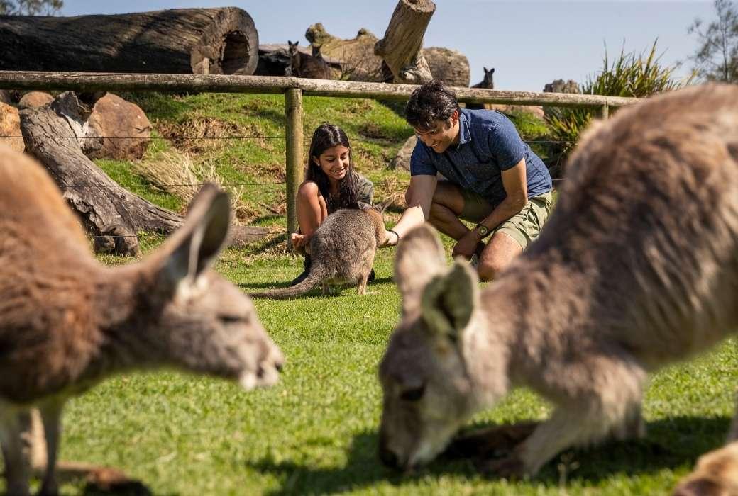 Oakvale Wildlife Park © Destination NSW