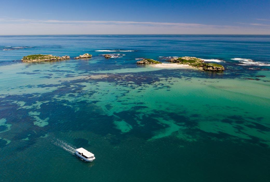 Penguin Island Wildlife Cruise with Perth Wildlife Encounters