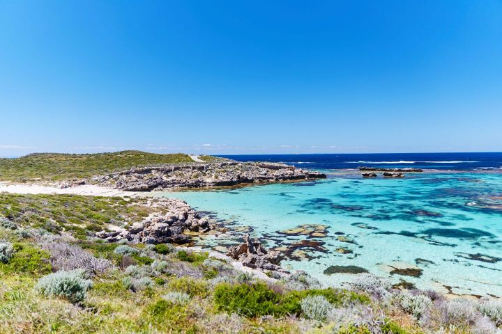 things to do with kids on Rottnest Island