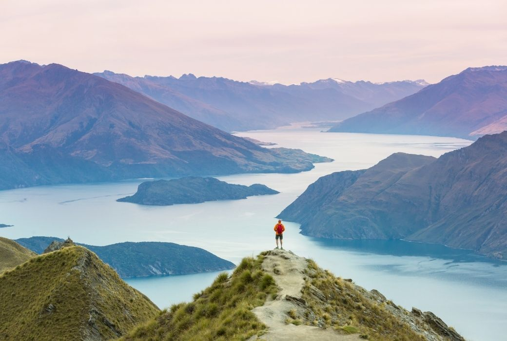 New Zealand travel forms
