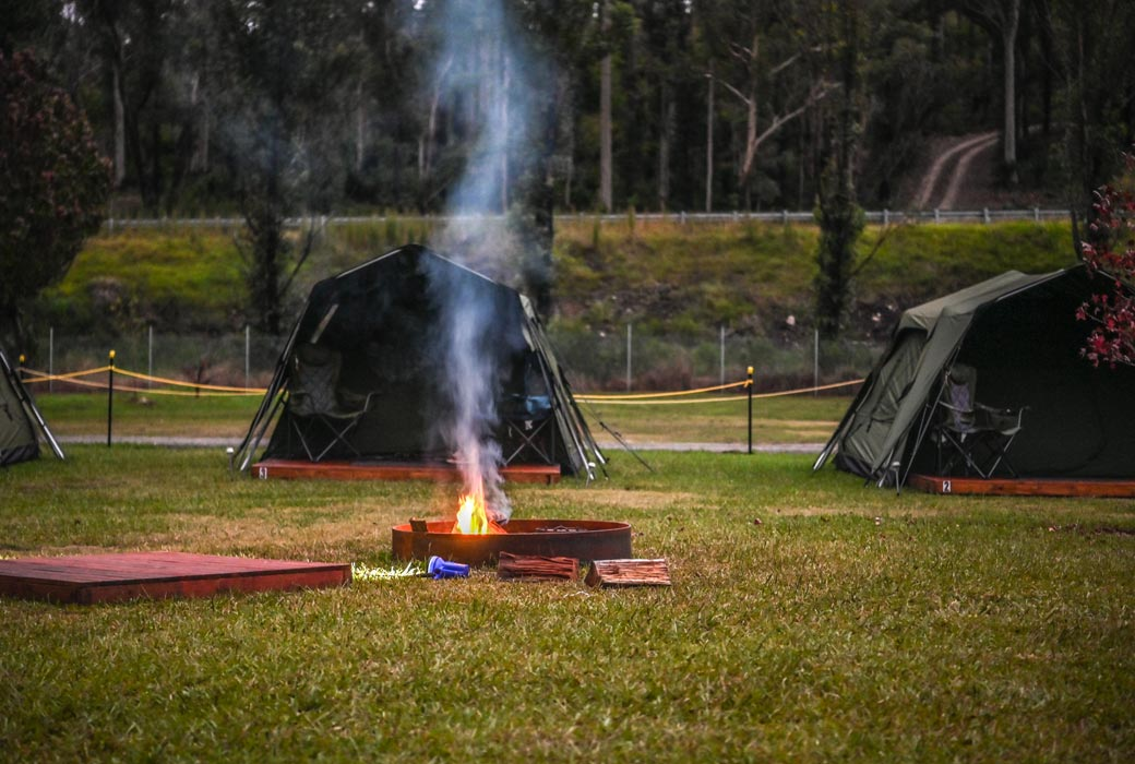 Mogo zoo camping and animal experience