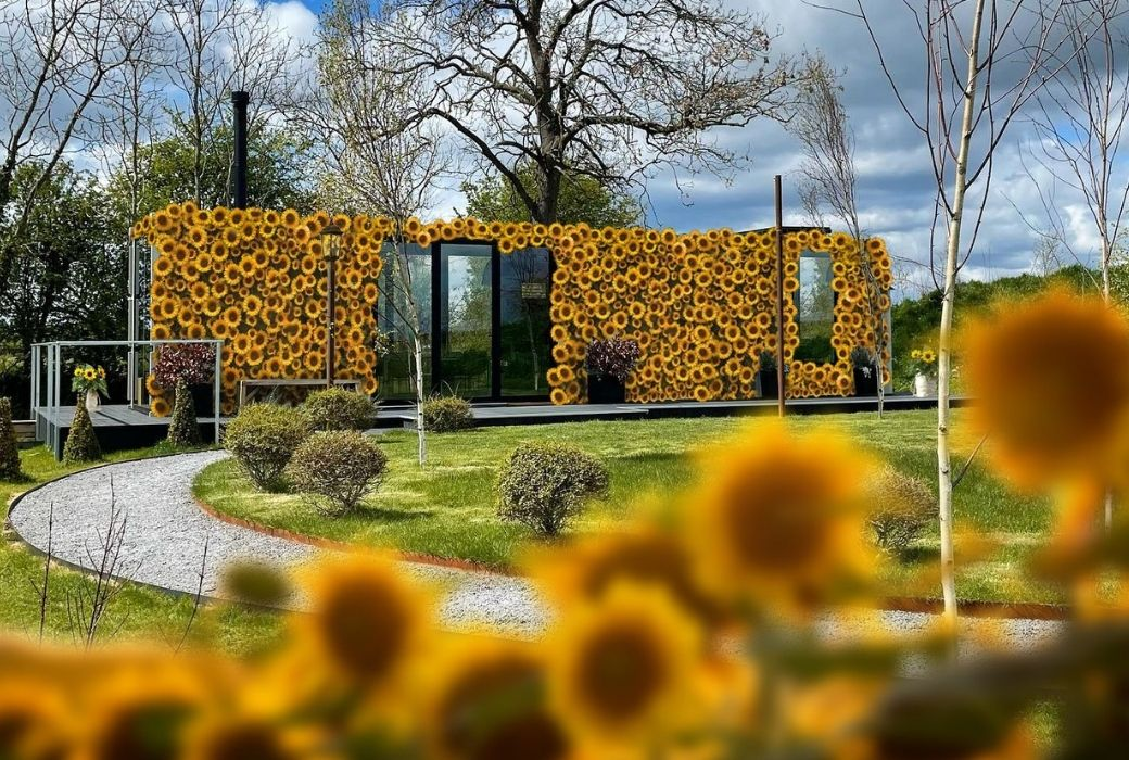 Sunflower hotel UK